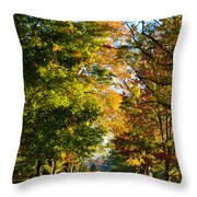 On A Country Road Throw Pillow