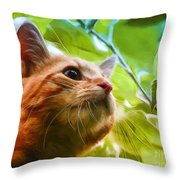 On A Discovery Tour Throw Pillow