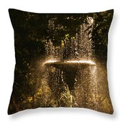 On A Perfect Day Throw Pillow