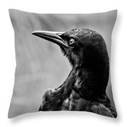 On Alert - Bw Throw Pillow