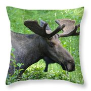 On His Way Throw Pillow