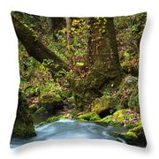 On The Banks Of Big Spring In The Missouri Ozarks Throw Pillow