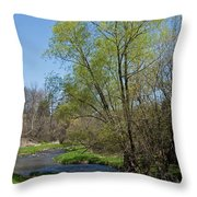On The Banks Of Spring Throw Pillow