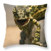 On The Heel Of A Boot A Flap-necked Throw Pillow