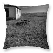On The Hi-lo Plains Throw Pillow