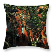 On The Shady Side Throw Pillow
