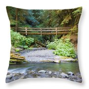 On The Trail To Marymere Throw Pillow
