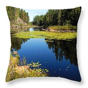 On The Way To East Lunch Lake Throw Pillow
