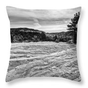 On The Way To Subway Throw Pillow