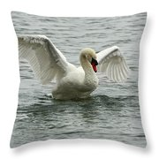 On The Wings Of A Swan Throw Pillow