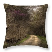 On This Trail Throw Pillow