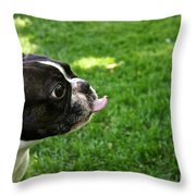 ...on You Throw Pillow