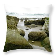 Ona Beach Throw Pillow