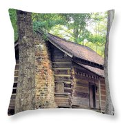 Once Lived In Throw Pillow