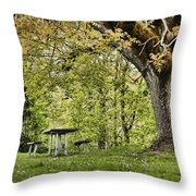 Once Upon A Picnic Throw Pillow