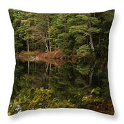 Once Upon An Autumn Morn Throw Pillow