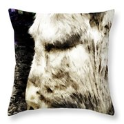 One Can't Complain Said Eeyore Throw Pillow