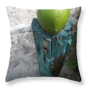 One Coconut Throw Pillow