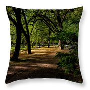 One Day In The City Park Throw Pillow