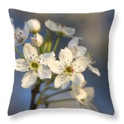 One Fine Morning In Bradford Pear Blossoms Throw Pillow