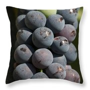 One Green Grape Stands Out In A Bunch Throw Pillow