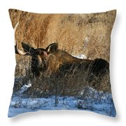 One Horn Throw Pillow