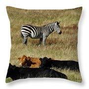 One Is Not Like The Others Throw Pillow by Methune Hively