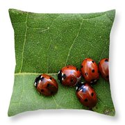 One Lady Bug Voted Off The Island Throw Pillow