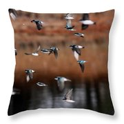 One Last Swallow Throw Pillow