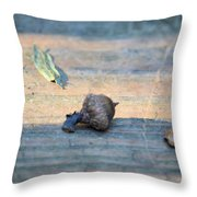 One Less Nut Throw Pillow