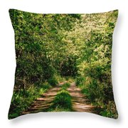 One Lonely Path Throw Pillow
