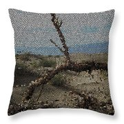 One Majastic Trunk And One Hot Desert Throw Pillow