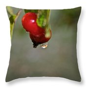 One More Drip Throw Pillow