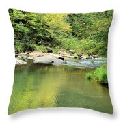 One Of Those Peaceful Places Throw Pillow
