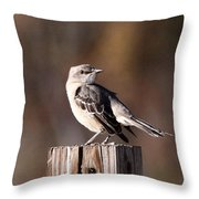 One On A 4x4 Throw Pillow