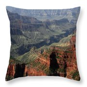 One River's Power Throw Pillow