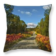 Ontario Backroad Throw Pillow