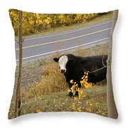 Oooops Wrong Trail Throw Pillow