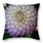 Open For Pleasure Throw Pillow