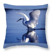 Open Over Blue Throw Pillow