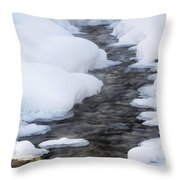 Open Running Creek With Snow Covered Throw Pillow by Michael Interisano