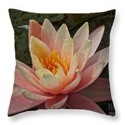 Open To Possibilities Throw Pillow