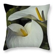 Open White Calla Lily Throw Pillow