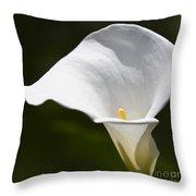 Open White Calla Lily V Throw Pillow