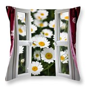 Open Windows Onto Large Daisies Throw Pillow