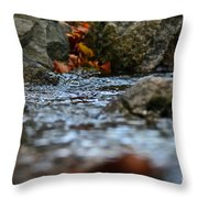 Opposite Shore Throw Pillow