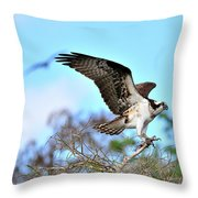 Opsrey Spreading It's Wings Throw Pillow