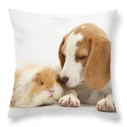 Orange-and-white Beagle Pup And Alpaca Throw Pillow