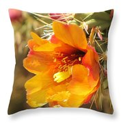 Orange And Yellow Cactus Flower Throw Pillow