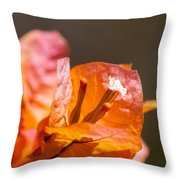 orange Bougainvillea Throw Pillow